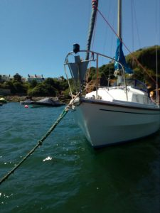 Mooring Matters – Waterford Harbour Sailing Club